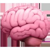 :brain: