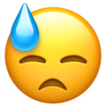 :cold_sweat: