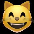 :funny_cat: